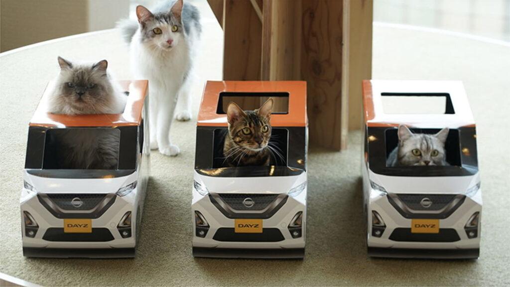 Nissan-Dayz-cat-11